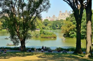 Uno de los lagos de Central Park