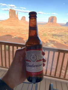 the view budweiser